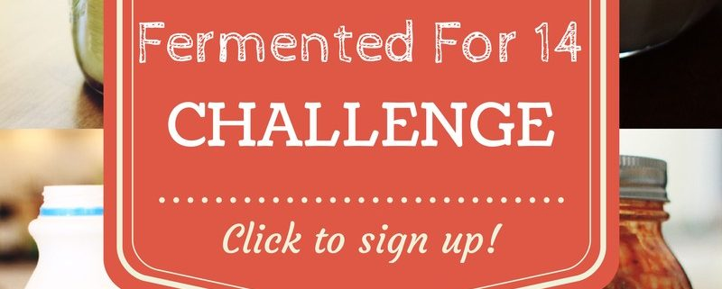 Join the Fermented For 14 Challenge!